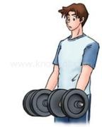 筋トレ:腕の前側(力こぶ)1