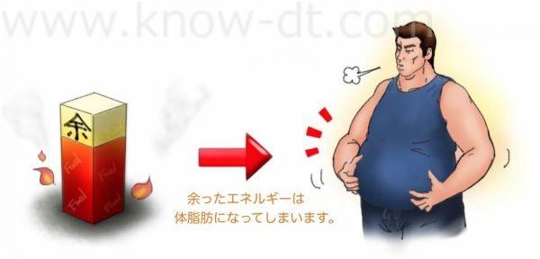 余ったエネルギーは体脂肪になってしまいます。