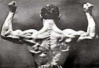 チューブトレーニングで作り上げた体
