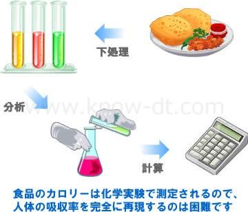 食品のカロリーは化学実験で測定されるので、人体の吸収率を完全に再現するのは困難です
