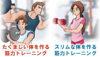 部分別筋力トレーニング