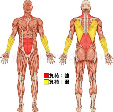 腹筋ローラーエクササイズの負荷